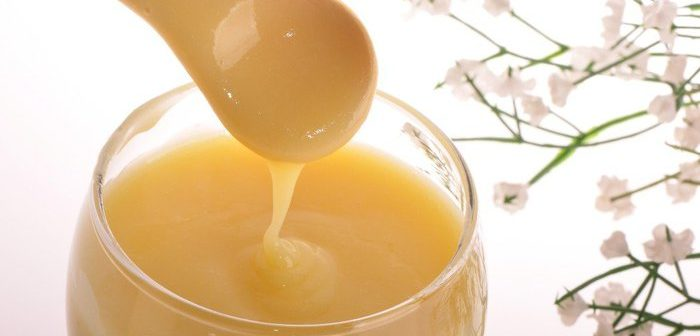 Маточне молочко бджіл: що таке і де використовується?