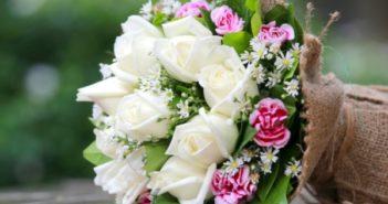 Какие лучше подарить девушке цветы
